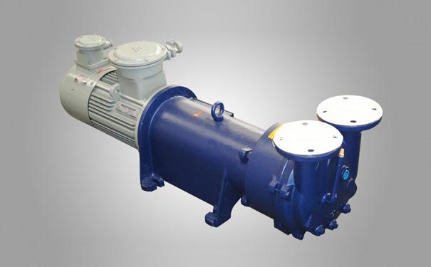 2BV6水环真空泵图片