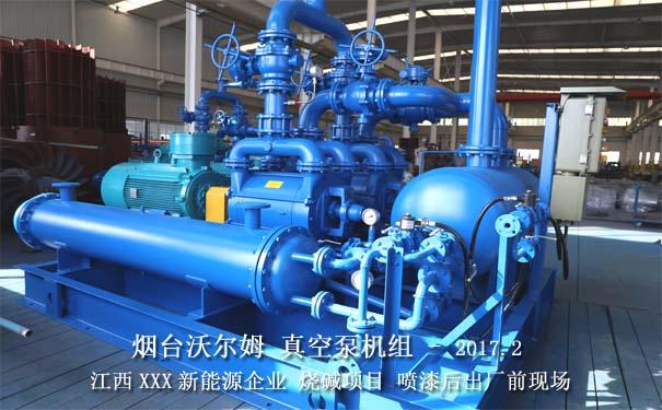 真空泵机组图片,真空泵机组案例,真空泵厂家,闭式循环真空泵机组