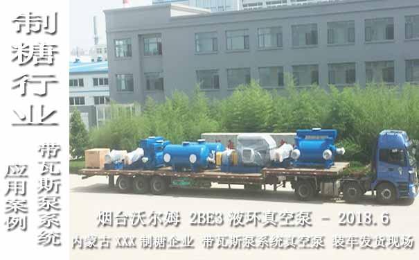水环式真空泵图片,水环式真空泵案例,真空泵在制糖行业上的应用