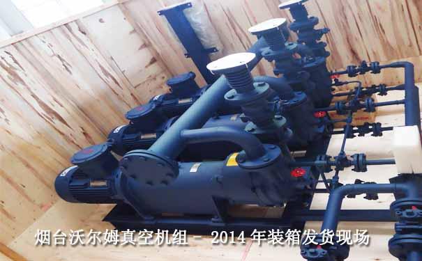 2014.9珠海某制药2BV系列液环真空泵机组案例