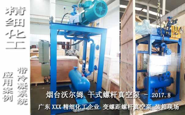 2017.8广东某精细化工带冷凝系统的ESDP320干式螺杆真空泵案例