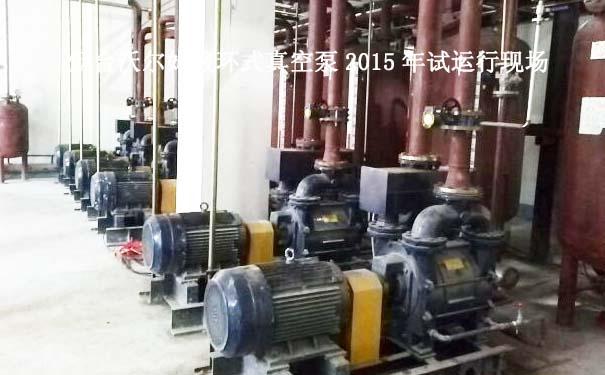 2015.1成都某集团项目液环式真空泵案例
