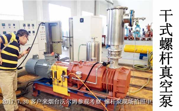 双螺杆真空泵-沃尔姆螺杆泵生产厂家
